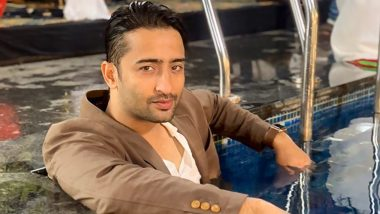 Shaheer Sheikh On Yeh Rishtey Hain Pyaar Ke Off Air 'I Like Doing Stories With A Definite Start and End'