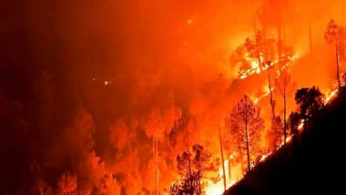 Olympia, Birthplace of Olympics, Under Threat From Raging Wildfires in Greece, See Horrific Images And Videos