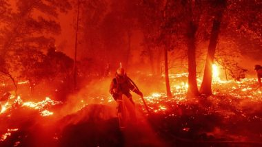 Wildfires in US: Over 4.1 Million Acres Burned in California