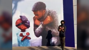Chadwick Boseman's Black Panther Mural at Disneyland Is a Beautiful Tribute to the Late Actor (Watch Video)