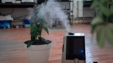 Wildfire Season 2020: From DIY Box Fan Air Purifier to Changing HVAC Filters, Know Ways to Purify Air From Smoke At Home