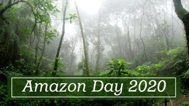 Amazon Day 2020: Know Some Fascinating Facts About the Rainforest That Will Leave You in Awe of It