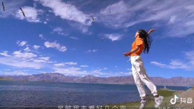 Chinese Propaganda? Pangong Tso Lake to Start Getting International Tourists, Claims Ad Video Shared by Unverified Twitter Users