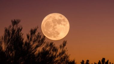 Harvest Moon 2020 Date: Know Where and How to See The First Full Moon of October That Rises Thursday Night