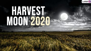 Harvest Moon 2020 Date and Time: Know Everything About The Full Moon of October and Why It is a Rare One?