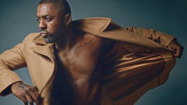 Beast: Idris Elba to Star in Survival Thriller Featuring a Lion As the Predatory Antagonist