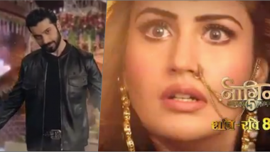 Naagin 5 Teaser: Surbhi Chandna as Icchadhari Nagin Slapping Sharad Malhotra's Cheel Is The Stupidest Video You Will See on Internet Today