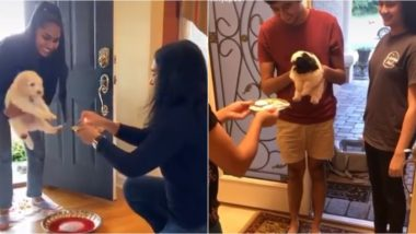 Puppies Performing 'Griha Pravesh Puja' Before Entering Their Forever Homes Are Pure Gold, Watch Adorable Videos