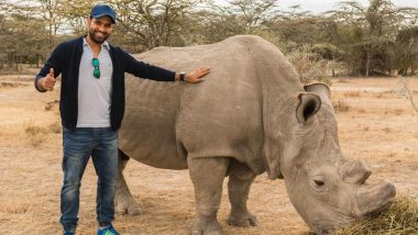 World Rhino Day 2020: Times When Rohit Sharma, Mumbai Indians Captain, Batted for Rhino Conservation as Part of Rohit4Rhinos