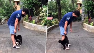 Sachin Tendulkar's New Friend 'Cat' Revisits the House, Master Blaster Think His Latest Visitor Is Missing Vada Pav (Watch Video)