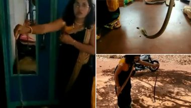 Snake Catcher Nirzara Chitti Dressed For a Wedding Goes to Rescue a Cobra Instead! Video of Her Snake Rescue in a Saree Impresses Netizens