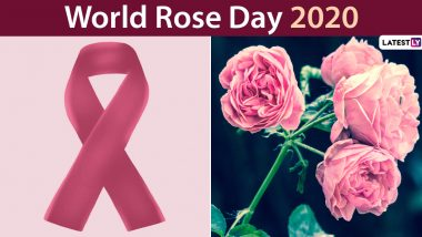 World Rose Day 2020 Wishes and Images Trend Online: Know About This Day Marked in Support of Cancer Patients and Messages to Send Them