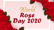 World Rose Day 2020 HD Images And Wallpaper For Free Download Online: WhatsApp Stickers, Rose GIFs, Facebook Photos & Instagram Stories to Spread Cheer And Hope Among Cancer Patients
