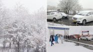 Kashmir Sees First Snowfall of Winter Season 2020, See Beautiful Pictures of the Valley Drenched in a Carpet of Snow