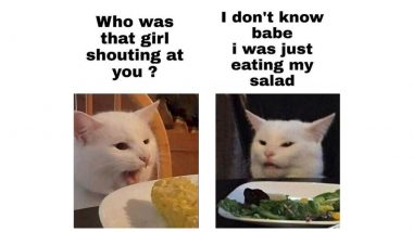 National Cat Day 2020 Funny Memes: These Hilarious Jokes, Viral Cat Memes and Social Media Posts Are 'Pawsome' to Celebrate Your Feline Buddies!