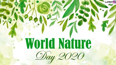 World Nature Day 2020 HD Images, Wishes & Greetings: Share WhatsApp Stickers, GIF Images, Pics of Mountains, Beaches and Other Natural Spaces with Quotes to Celebrate the Day!