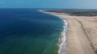 'Blue Flag' Certification Accorded to 8 Beaches of India; Check Names And Know More About The Coveted Eco-Label