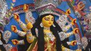 Durga Puja 2020: What is Nabapatrika Puja? Know the List of Nine Leaves Used in Navpatrika Puja Vidhi on Maha Saptami