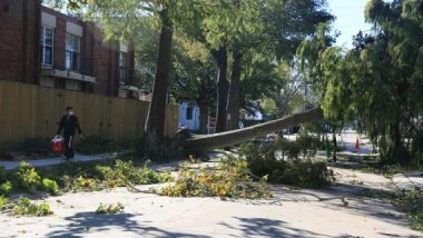 Hurricane Zeta Leaves Half a Million People Without Power in US State of Louisiana