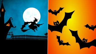 Halloween 2020 Funny Yet Scary GIFs and HD Images! Hilariously Frightening GIF Videos to Send Greetings on All Hallows' Eve