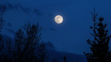 Hunter's Blue Moon 2020 Timings and How to Watch: Know All Details About Rare Full Moon Which Rises on Spooky Halloween Night