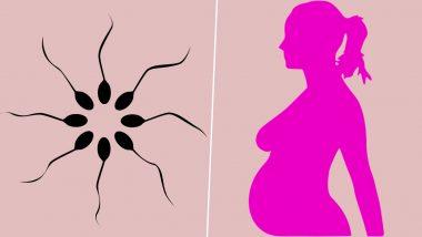 Pfizer, Moderna COVID-19 Vaccines Do Not Lower Sperm Counts: Study