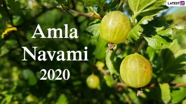 Amla Navami 2020 Date, Puja Muhurat and Shubh Tithi: Know History, Significance, Puja Vidhi and More to Celebrate Akshaya Navami