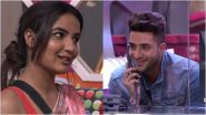 Bigg Boss 14: Aly Goni and Jasmin Bhasin Allegedly Discuss Their Contract Deets, Bad TRPs, Show's Extension In This Unverified Viral Audio Clip