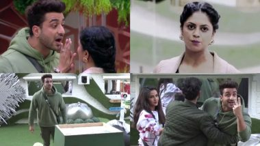 Bigg Boss 14 November 24 Episode: Aly Goni Pays a Huge Prize for Getting Violent Towards Captain Kavita Kaushik – 6 Highlights of BB 14