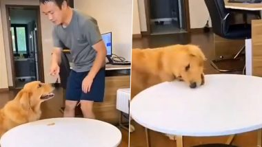 Dog's Self-Control Challenge Goes Viral, Canine Eats Treat And Keeps Another One on Table, Twitterati Believe It's Trained (Watch Funny Video)