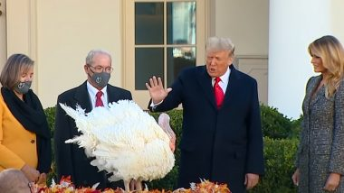 Donald Trump Pardons 'Corn' as National Thanksgiving Turkey 2020; Know About The Annual Tradition of White House Turkey Pardon (Watch Video)