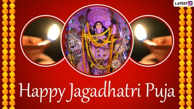 Jagadhatri Puja 2020 Greetings And Goddess Durga HD Images: WhatsApp Stickers, Facebook Greetings, Instagram Stories, Messages And SMS to Send on Akshaya Navami