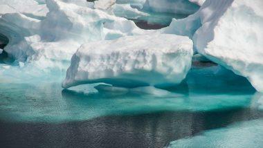 A68 Iceberg Floats Toward Sub-Antarctic Island South Georgia, Puts Wildlife at Risk