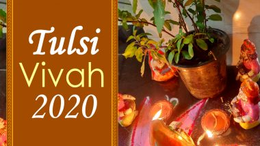 Tulsi Vivah 2020 Dos & Don'ts: From Not Plucking Basil Leaves to Fasting Rules, Auspicious Rituals to Keep in Mind For Good Luck and Prosperity on Probodhini Ekadashi