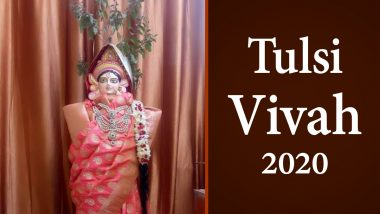 Tulsi Vivah 2020 Date and Shubh Muhurat: Know Significance of This Ceremonial Tulasi Marriage Rituals Celebrated After Diwali