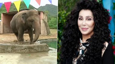 World's Loneliest Elephant 'Kaavan' to Be Restelled From Pakistan Zoo to Cambodian Sanctuary With Help of Singer Cher, Pakistan PM Imran Khan Appreciates Her Efforts