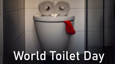 World Toilet Day 2020 Date and Theme: Know History and Significance of The Day Raising Awareness About Global Sanitation Crisis