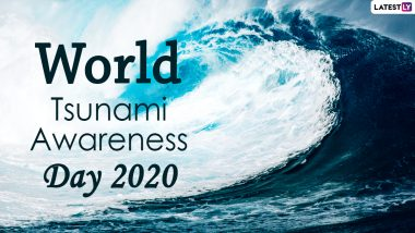 World Tsunami Awareness Day 2020 Date And Theme: Know The History And Significance of the Observance That Creates Awareness About the Natural Disaster