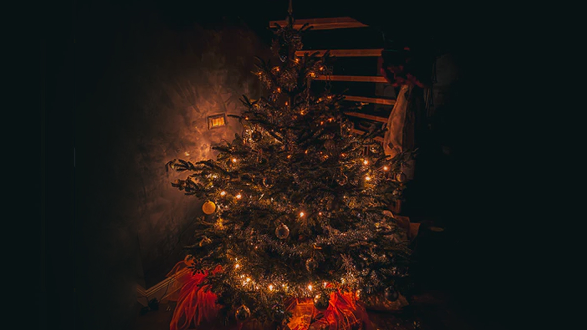 How To Decorate Christmas Tree 2020 At Home Use Ribbons Lights Mesh Tulle Picks And Garland To Decorate Xmas Tree Like A Professional Watch Videos Latestly