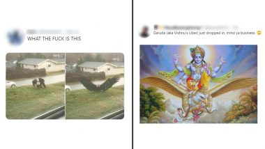 Huge Bald Eagle Viral Pictures Described as Garuda, 'Vishnu's Uber' by a Twitter User With All 'Love and Respect', Hindus Are Loving It