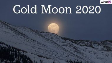 Cold Moon 2020 Date and Timings: Know Everything About The Full Moon of December, The Last Lunar Event of This Year