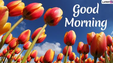 Good Morning 2021 Images & HD Wallpapers for Free Download Online: WhatsApp Messages, Positive Quotes and Happy Greetings to Send Your Family & Friends Early Morning