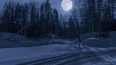 Saw Moon in Your Dreams? Know The Meaning And Interpretation of Seeing the Celestial Body While Sleeping