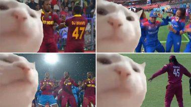 Vibing Cricketers, Vibing Cat! ICC Wins Funny Meme Game That Has Cat Vibing to Bilal Goregen's Ievan Polkka Rendition