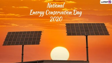 National Energy Conservation Day 2020 Date And Theme: Know The History And Significance of the Observance That Promotes Electricity Conservation