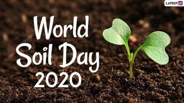 World Soil Day 2020 Date And Theme: Know The History And Significance of The Observance That Highlights the Importance of Healthy Soil