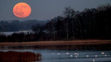 Cold Moon 2020: Stunning Pics of The Final Full Moon of the Decade Mark End of the Year Blissfully