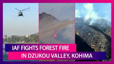 Indian Air Force Fights Forest Fire In Dzukou Valley, Kohima; Lifts Water To Douse Wildfire In Nagaland