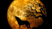 Wolf Moon 2021 on January 28: How and When to Watch the First Full Moon of the Year? Here's Everything You Should Know