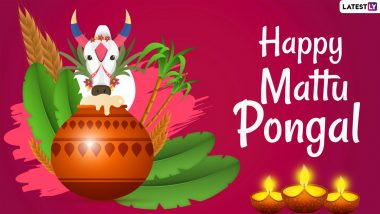Mattu Pongal 2021 Wishes, Quotes & Greetings: Share Thai Pongal Messages, HD Images, Facebook Pics and GIFs on the Third Day of the Harvest Festival